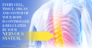 In Charge Of It All - Explore Chiropractic